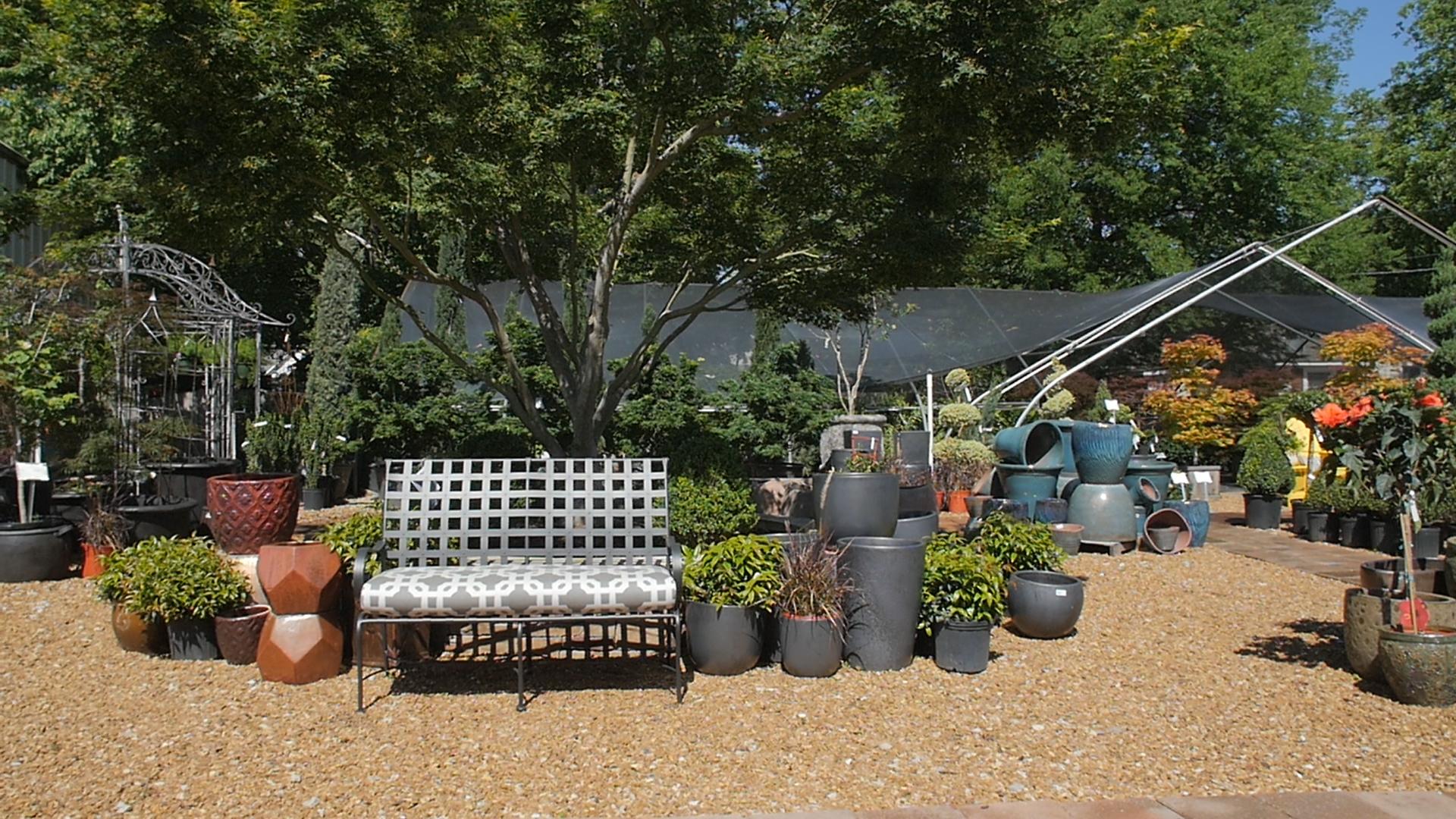 Brooks & Collier, Plants